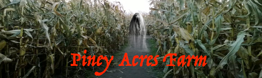 Indy Haunted Loft-Piney Acres Farm